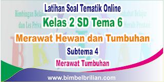 Soal Tematik Online Kelas 2 SD Tema 6 Subtema 4 Merawat Tumbuhan Langsung Ada Nilainya