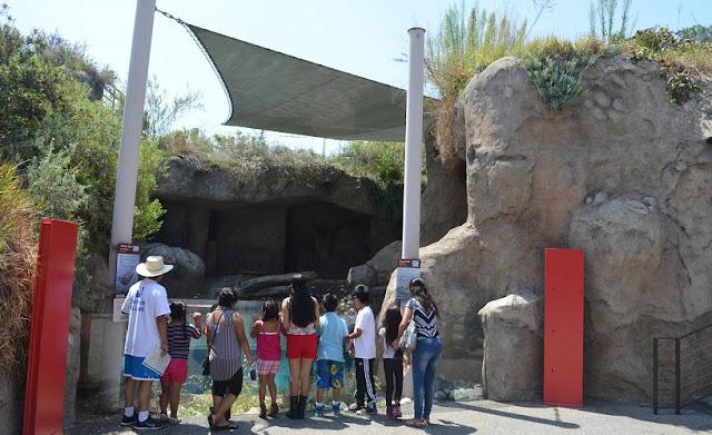 Sea Life Cliffs no Los Angeles Zoo