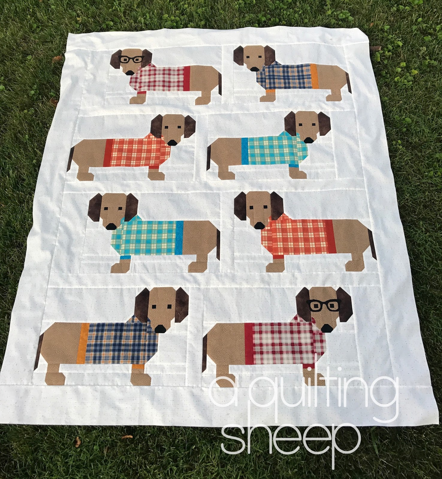 A Quilting Sheep Dogs In Sweaters