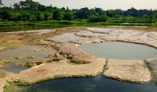 Tempat Wisata yang Wajib Anda Kunjungi di Bogor