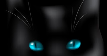 besplatne slike crna maca