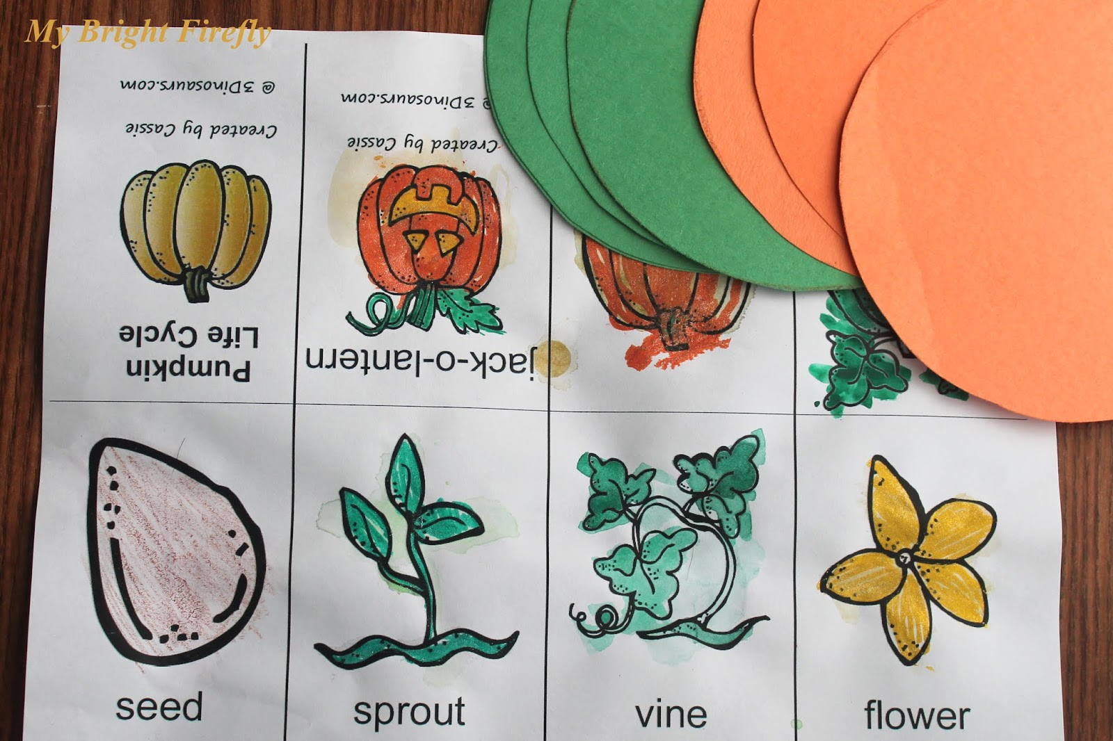 My Bright Firefly Pumpkin Life Cycle Sequencing And Pumpkin Ornament Craft