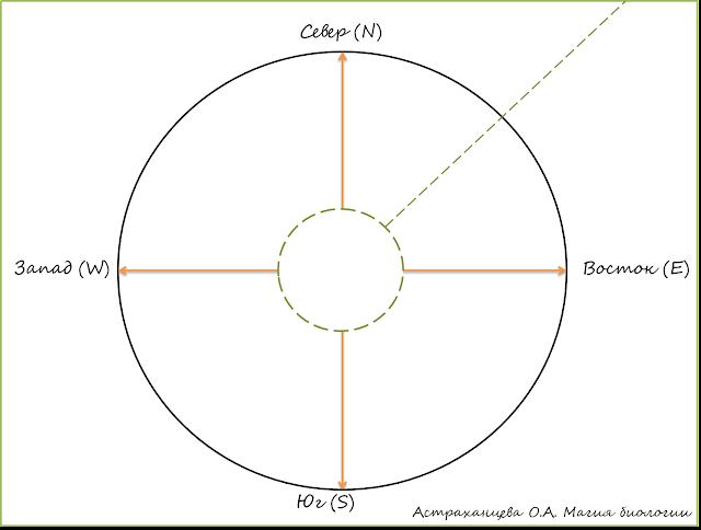 opyty-s-podsolnuhom-geliotropizm-fototropizm