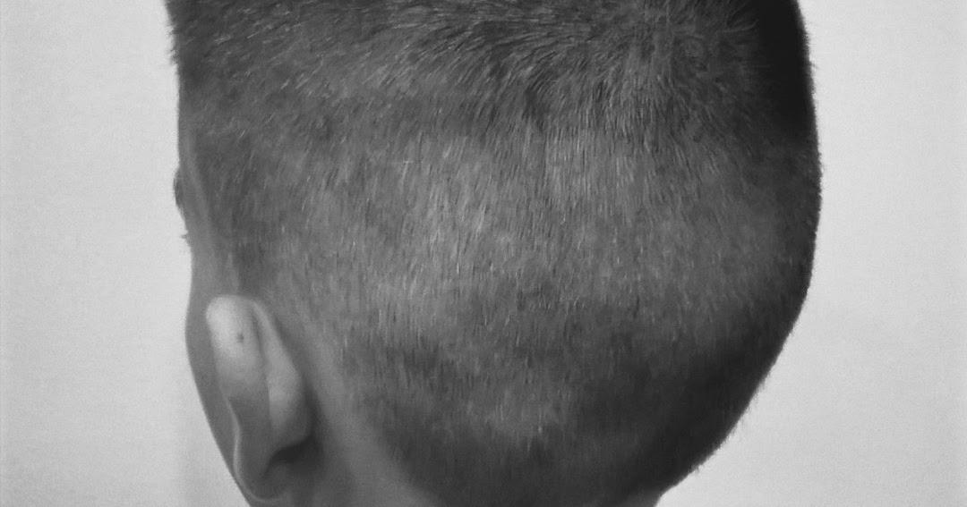 Summary 2 A Haircut Every 2 Weeks Eslyes