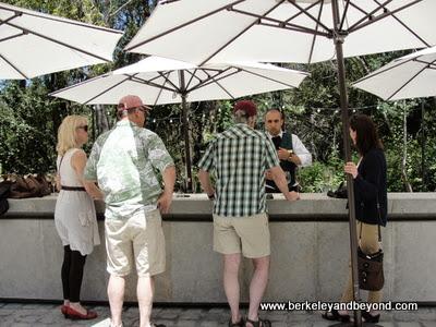 outdoorr wine tasting at Buena Vista Winery in Sonoma, California