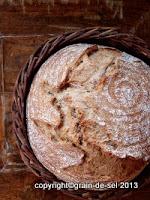 http://salzkorn.blogspot.fr/2012/08/warme-und-sauerteig-die-mogen-sich.html