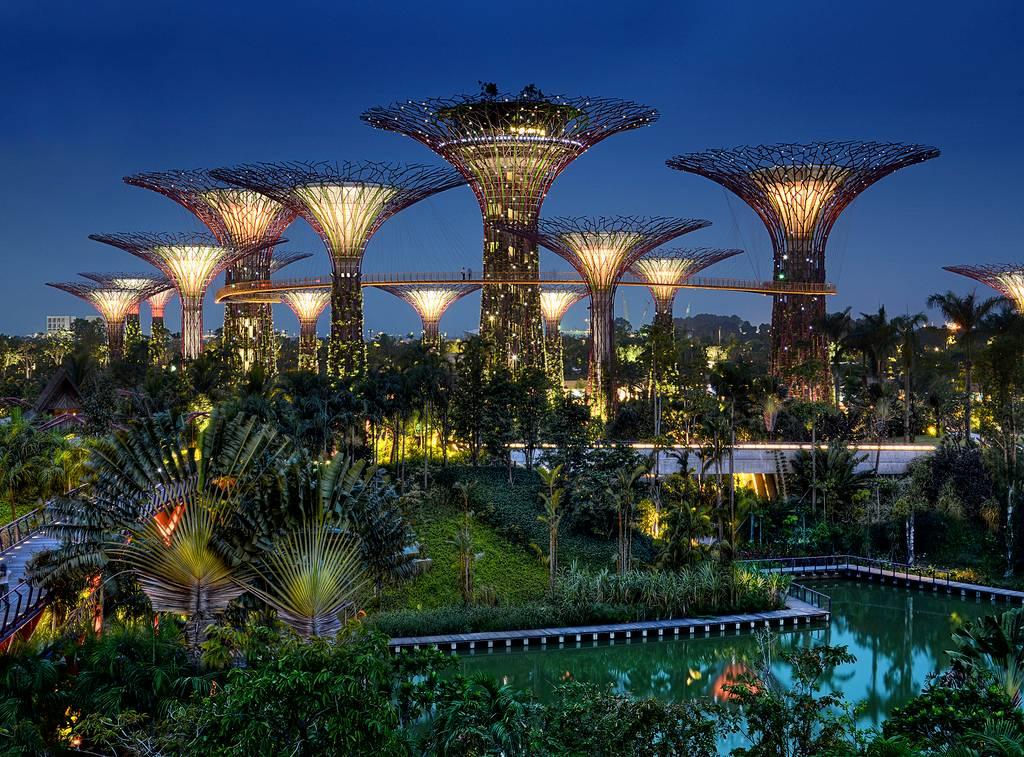 The Supertrees Of Singapore Kuriositas