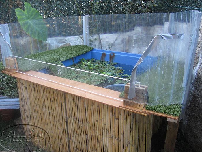 Mi jardin y mi huerto estanque de tortugas for Tortuguero casero