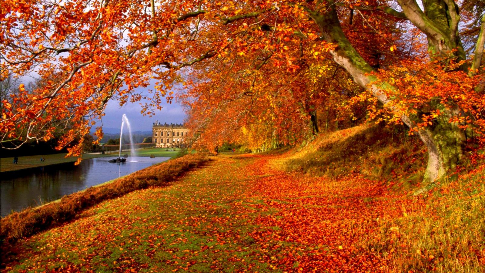 Latest Top HD Autumn Wallpapers