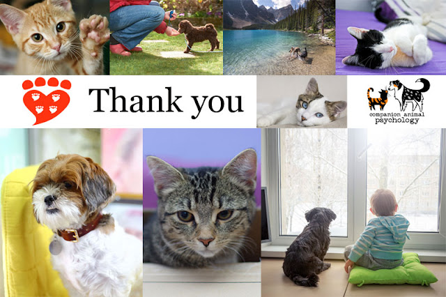Pet photos to thank you for supporting Companion Animal Psychology