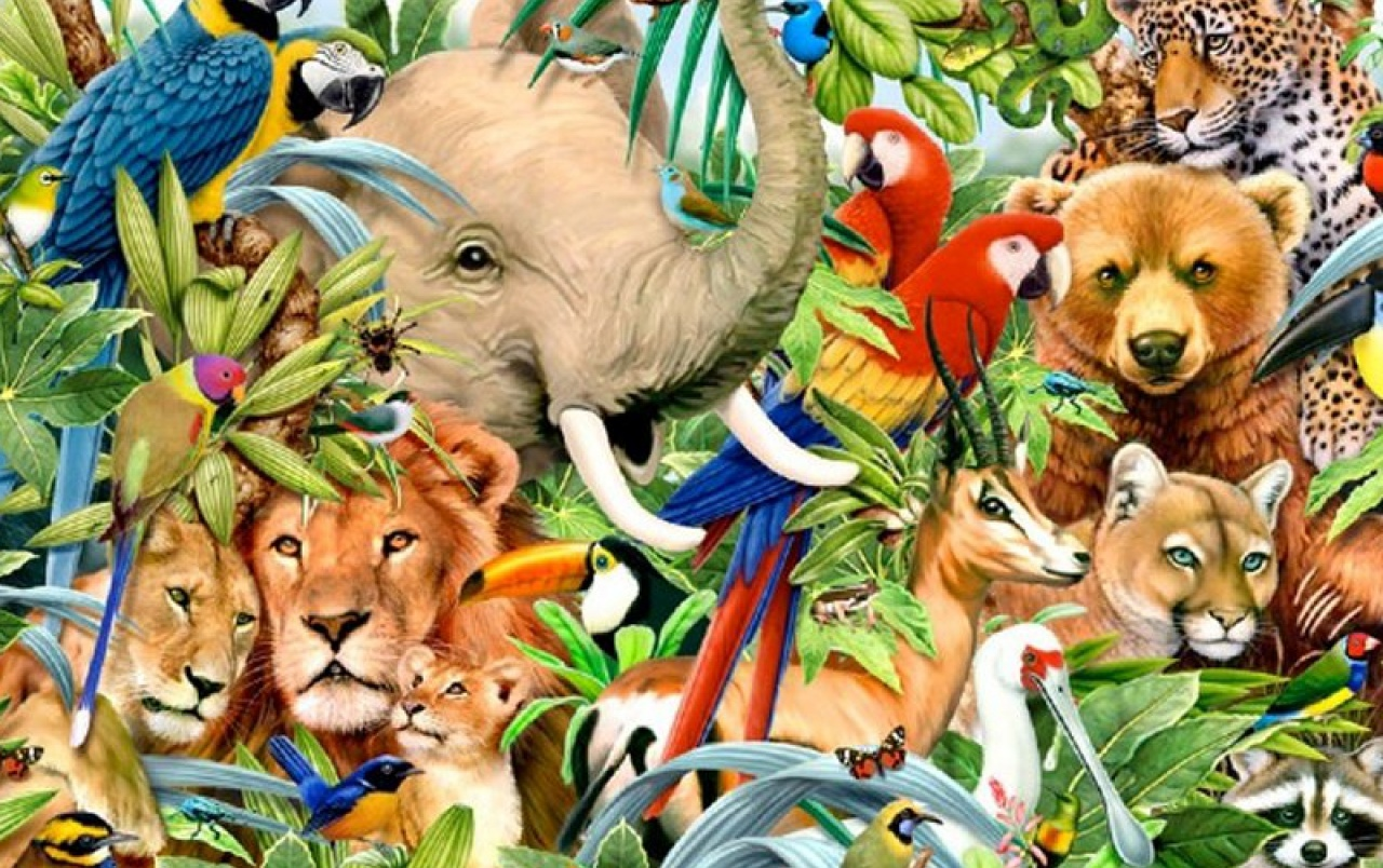 Coloring Pages That Look Like Real Animals : Animal coloring pages animal coloring pages