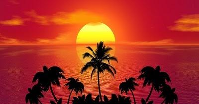 Frasi Divertenti Sulle Vacanze Estive Battute Simpatiche