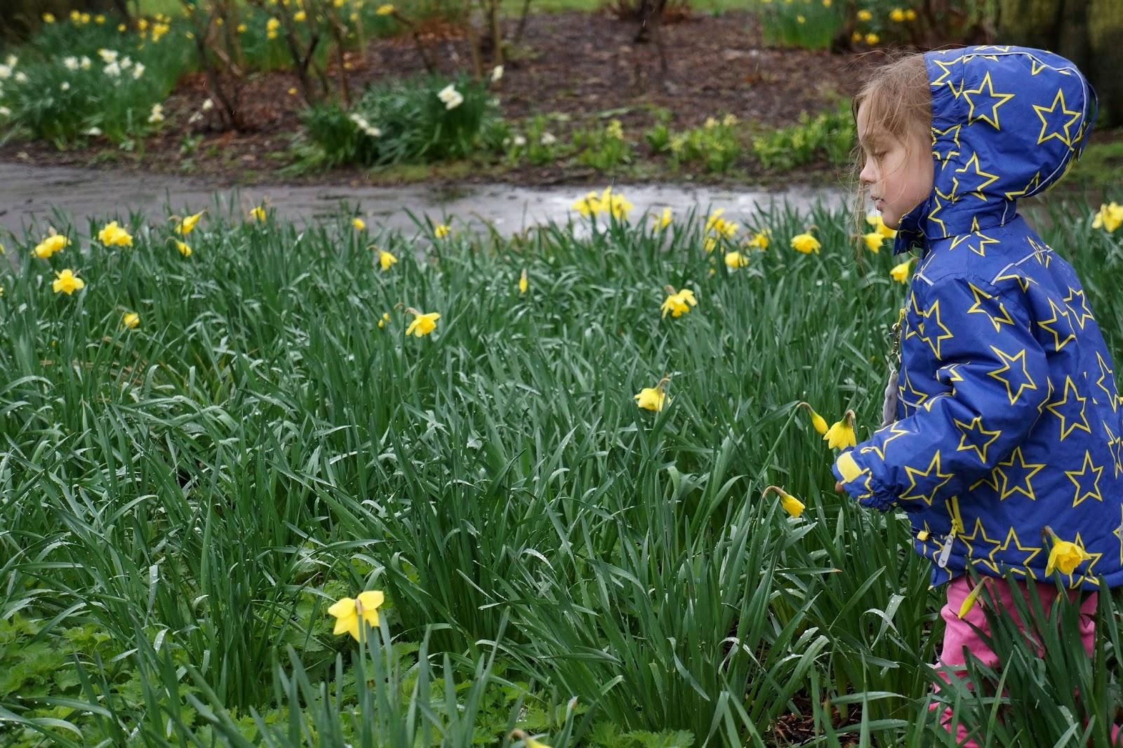 little girl walking amongst flowers