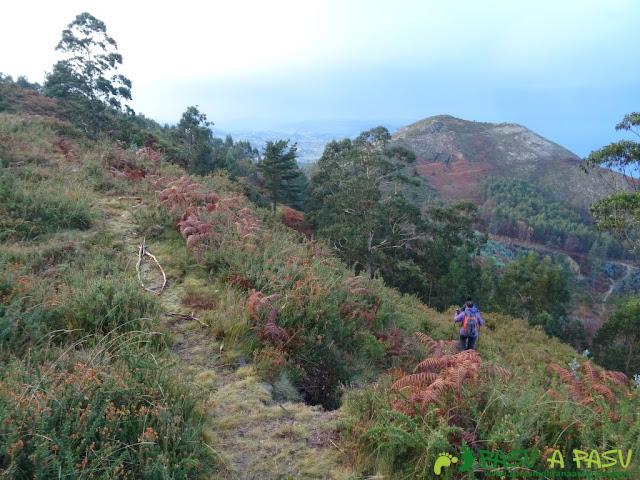 Ruta al Pico Gobia y La Forquita: Cotoyas en el sendero al Foquita