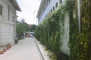 Taman Vertikal | Vertical Garden | jasataman.co.id XIV