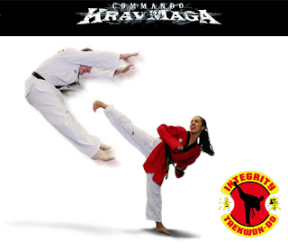 HOT DEAL: Integrity Tae Kwon Do - $10 for 10 Classes of