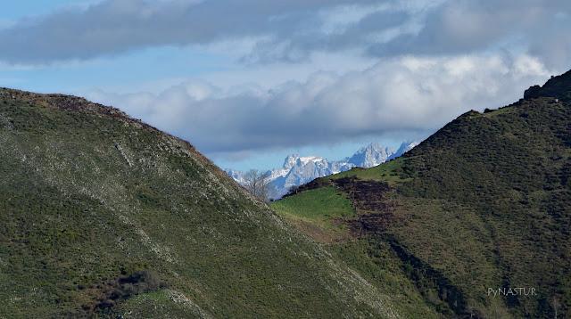 Vistas de Picos de Europa - Piloña - Asturias