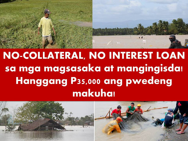 Farmers and Fishermen affected by a natural disasters like typhoon, will be beneficiaries of a loan program from government which is interest and collateral free.  The program is called Survival and Recovery Loan (SURE Loan) which will be payable in three years.  Agriculture Secretary Manny Piñol announced on his Facebook page that President Rodrigo Duterte approved P1 billion pesos to fund the loan program for farmers and fishermen.