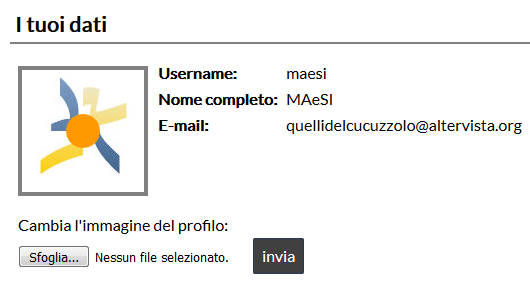 demo avatar utente area riservata