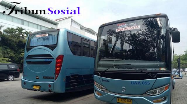 Kementerian Perhubungan: Agar Tak Celaka, Jangan Gunakan Bus Pariwisata Ilegal!