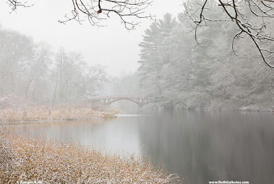 Massachusetts winter photography images