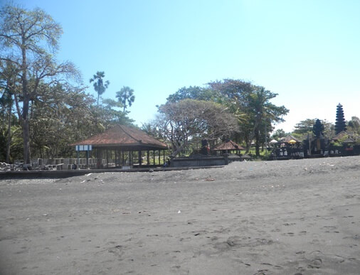 Saba Black Sand Beach, Saba Beach Bali Horse Riding, Turtle Conservation in Bali, Horse Riding Saba Beach, Saba Asri