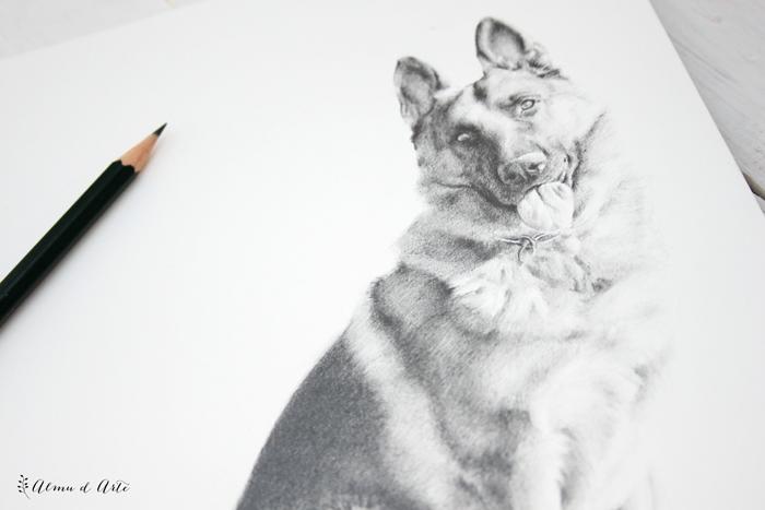 Retrato de un perro a lápiz sobre papel