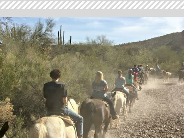 Exploring AZ: Salt River Trail Ride