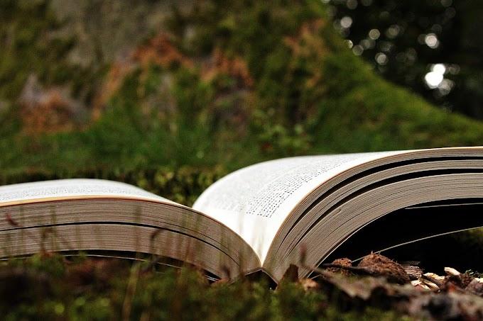 Książki idealne na prezent