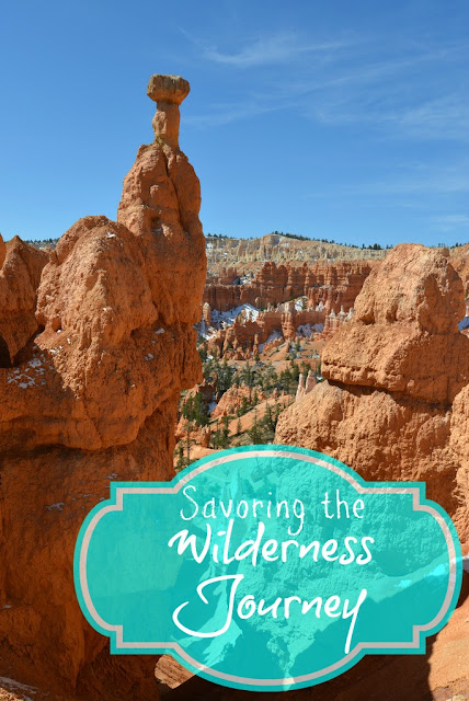 Savoring The Wilderness Journey