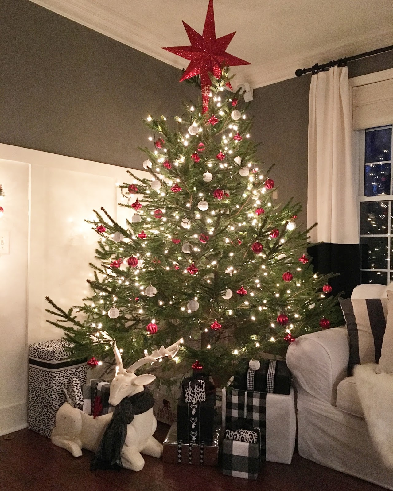 Where Does Christmas Trees Come From: The Yellow Cape Cod: Everything You Need To Know About A