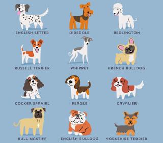 livro-raças-de-cães-pdf-baixar