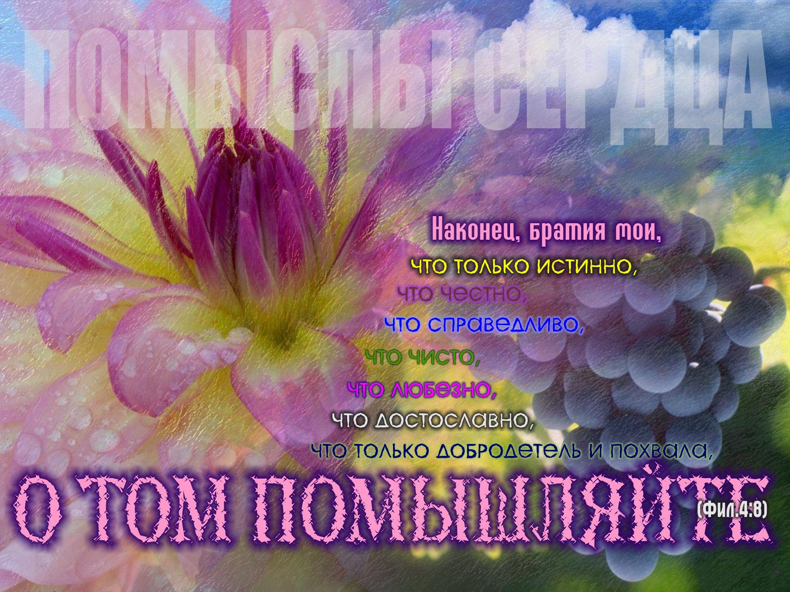 Христианские поздравления в открытках с надписью, поздравления новым