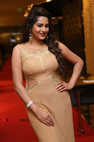 Actress Himaja Stills in Golden Spicy Long Dress at SIIMA Short Film Awards 2017 .COM 0255.JPG