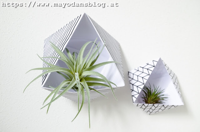Wandhalter Airplants