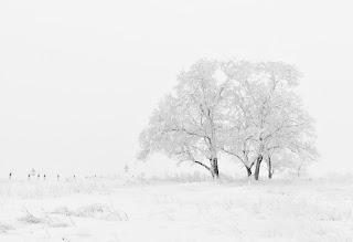 Зима стихи фото