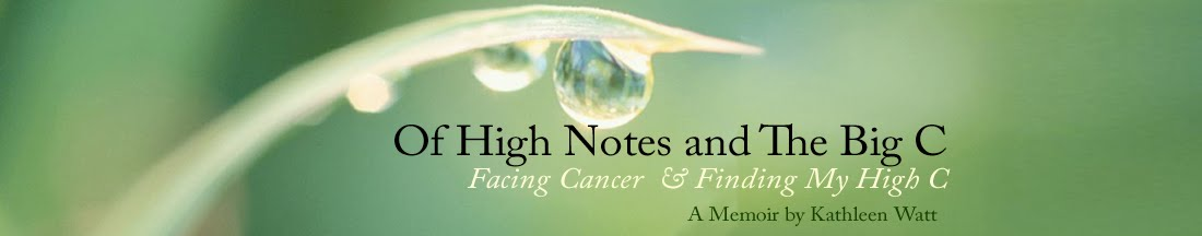 Of High Notes and The Big C — Facing Cancer & Finding My High Notes