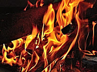 Cara Mencegah Kebakaran Hutan dan Lahan