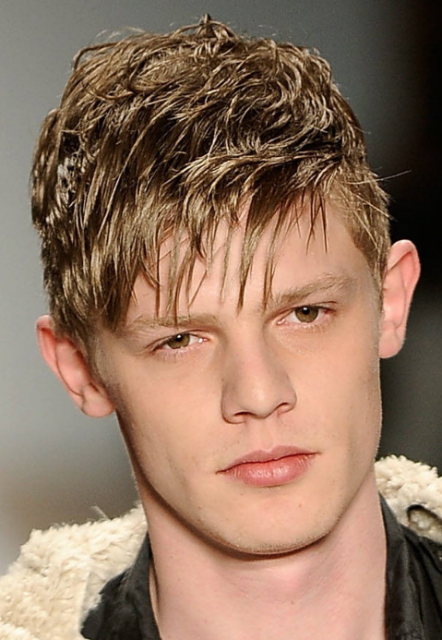 Men Hairstyle 2011 Zee Post