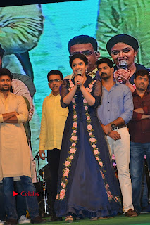 Nenu Local Audio Launch Stills  0017.JPG