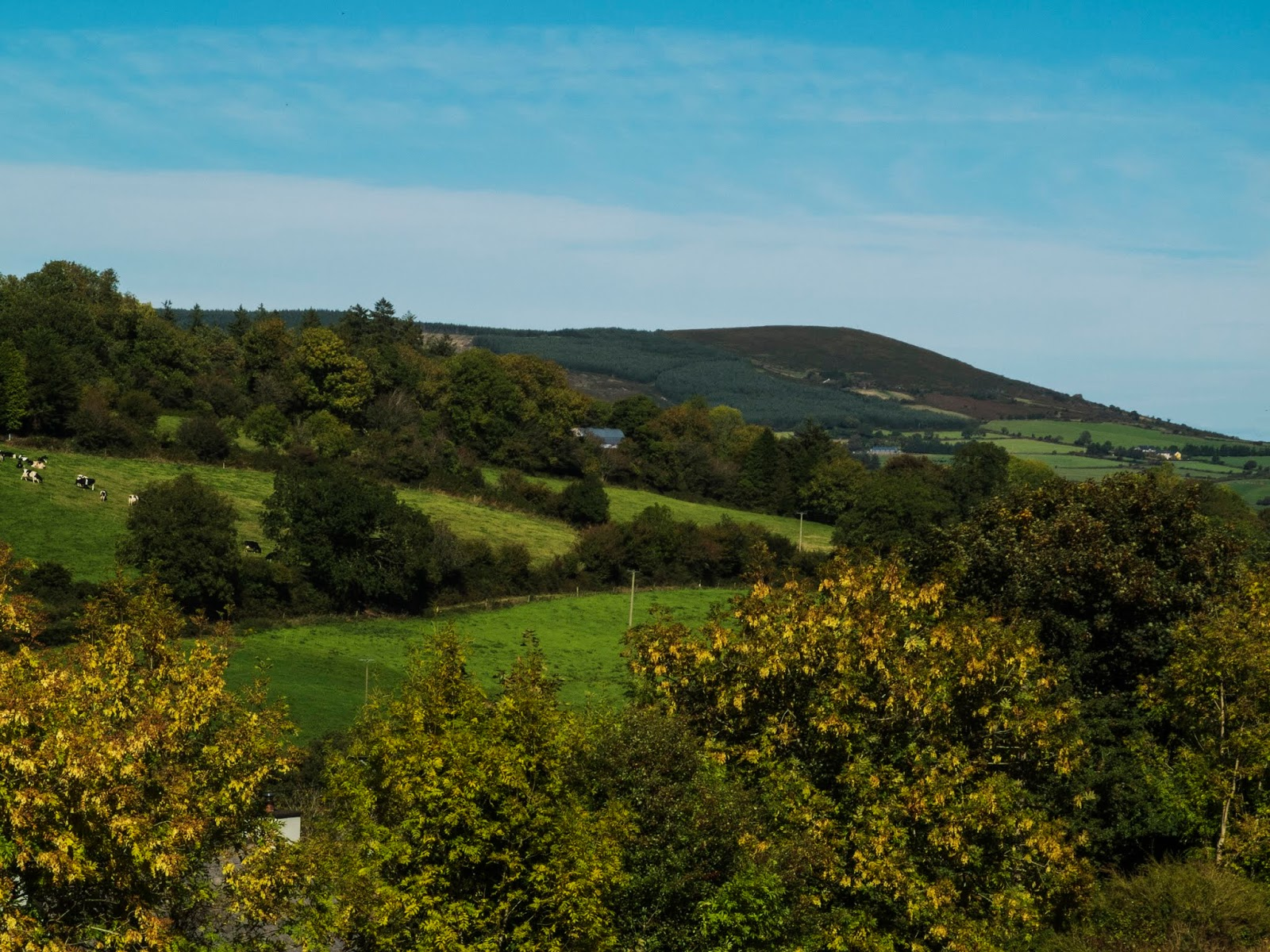 Sunny mountain landscape of North Cork.