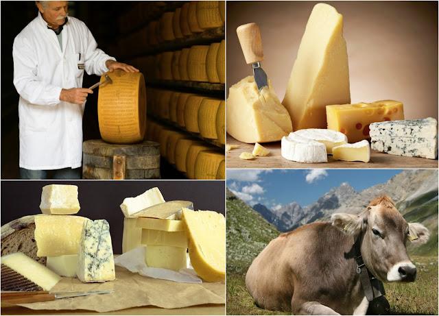 итальянская кухня сыр