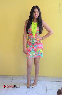 Telugu Actress Prasanna Stills in Short Dress at Inkenti Nuvve Cheppu Press Meet Stills  0180.JPG