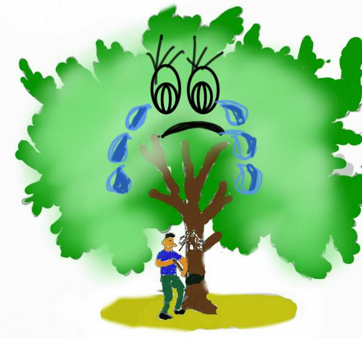 deforestation research essays Deforestation essays - original researches at competitive costs available here will make your education into delight dissertations and essays at most attractive prices.