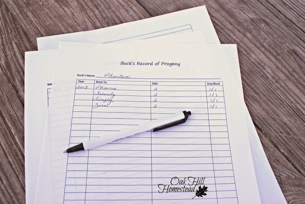 Buck's progeny printable
