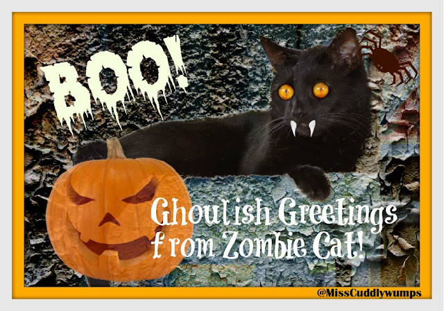 Stylized black cat with zombie eyes and fangs, Halloween