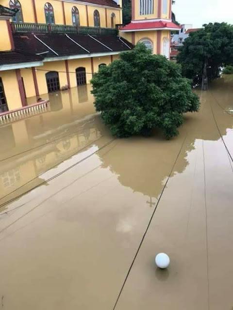 Toàn cảnh lũ lụt tại Ninh Bình và hoạt động cứu trợ tại Thanh Hoá - Ảnh minh hoạ 9