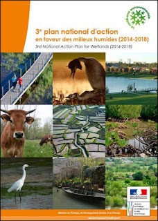 https://www.ecologique-solidaire.gouv.fr/sites/default/files/3e%20plan%20national%20d%E2%80%99action%20en%20faveur%20des%20milieux%20humides%20%282014-2018%29.pdf
