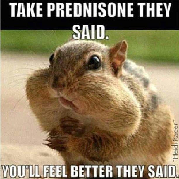 Buy prednisone pills
