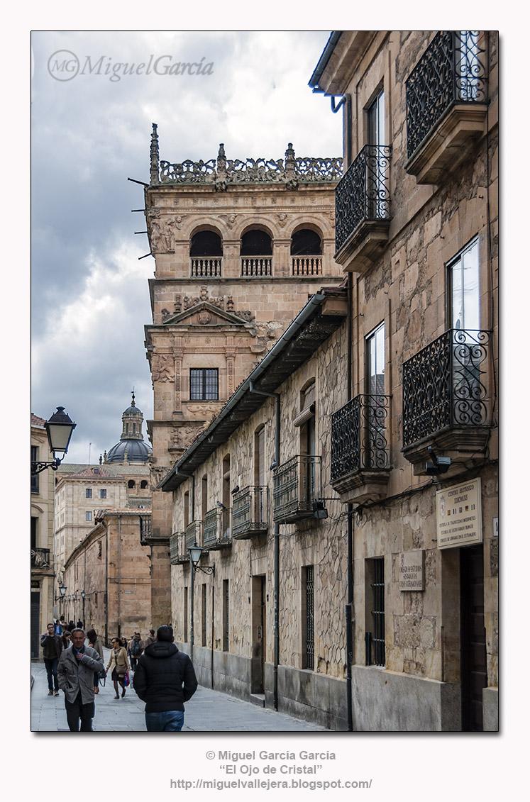 Calle de Bordadores y Palacio de Monterrey.- Salamanca